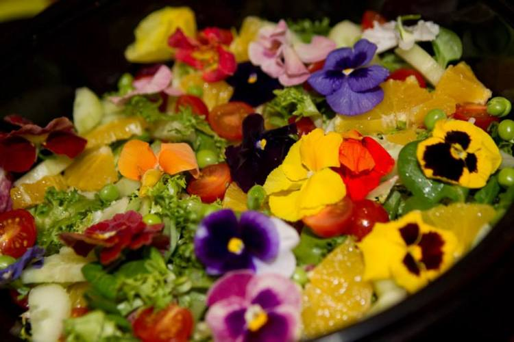 Flowers and fruit brighten up this salad - the only thing that WASN'T made in the AGA!