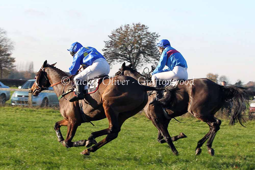 Rossmore Lad & Sagalyrique fight out the finish in the ladies
