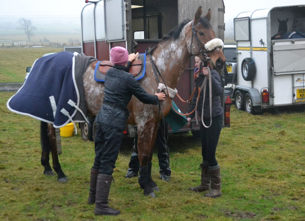 Ashtonmore is tacked up before the first race
