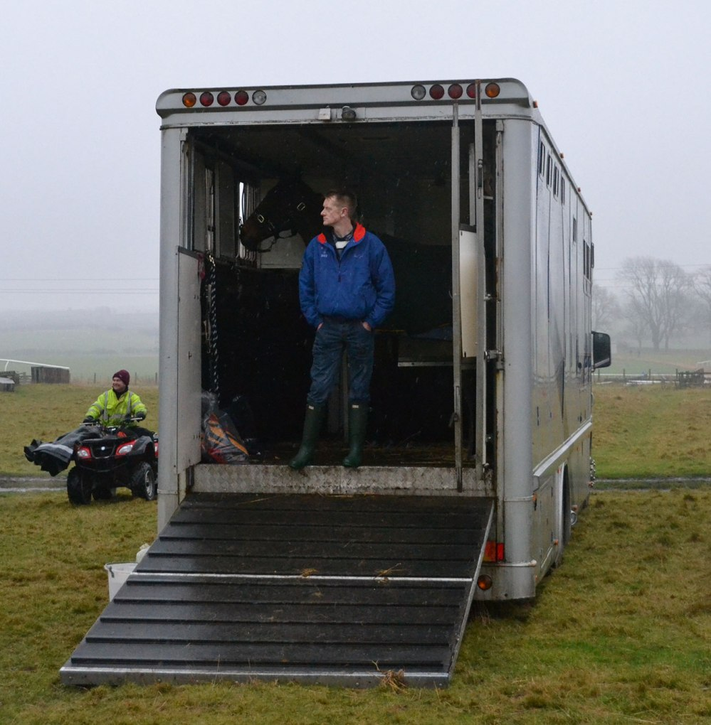 Contemplating the day ahead, and maybe a little reluctant to leave the shelter of the lorry?