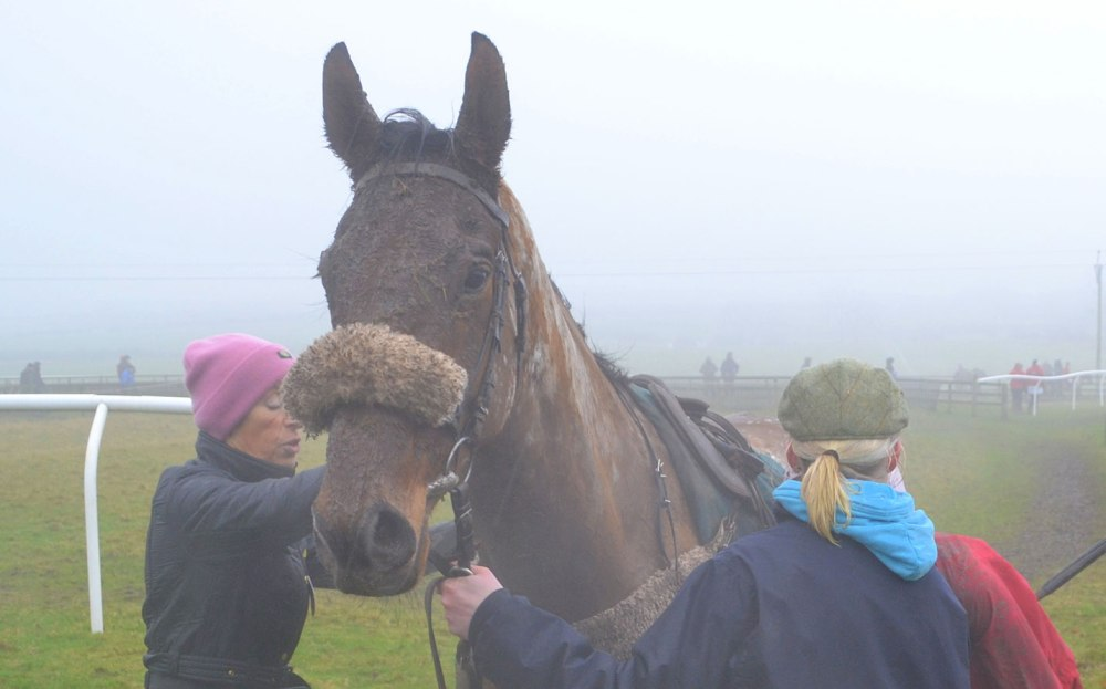 A very muddy Ashtonmore after finishing 4th in the first race