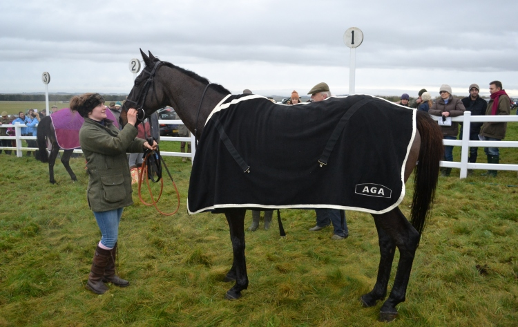 Gemma Groves and Gwanako, who is modelling the new AGA fleece cooler rug