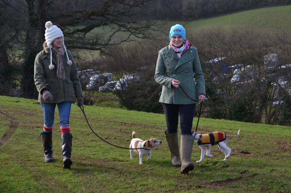 A pre-race dog walk