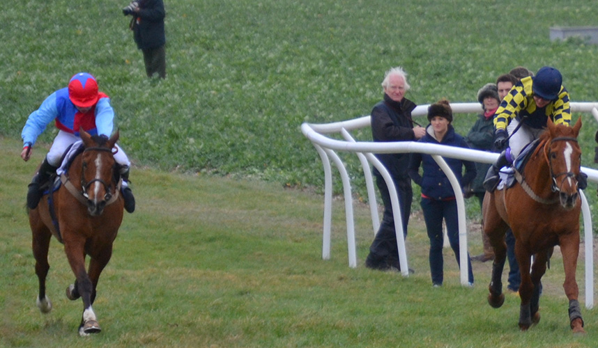 Pipped on the line! Aikideau gets up to beat Byerley Bear