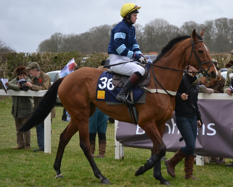 The claasy What A Friend, winner of over £300k under rules and 4th in the 2011 Cheltenham Gold Cup