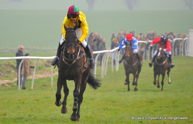 Botany Cove strolls home in the Restricted