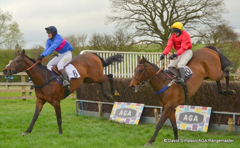 Horsham Lad (far side) lands just in front of Ravethebrave as they jump the last