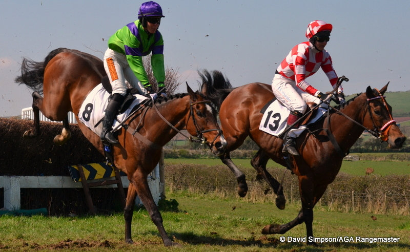 Eventual winner, Pathian Prince (light green) and Watch The Birdie