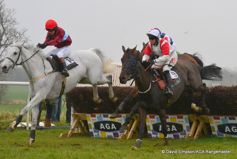 The dashing grey Sotovik leads eventual winner Maxwil with a circuit to go