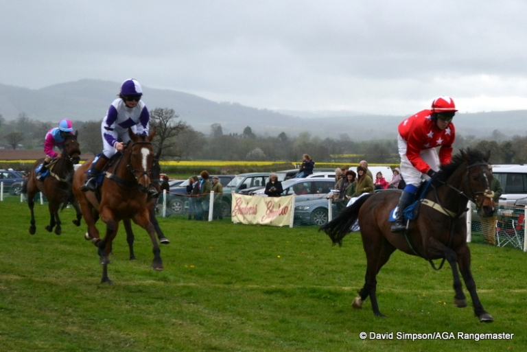 Action from the 148cms and under open pony race