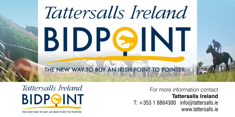 BIDPOINT - the new way to buy an Irish Point-to-Pointer